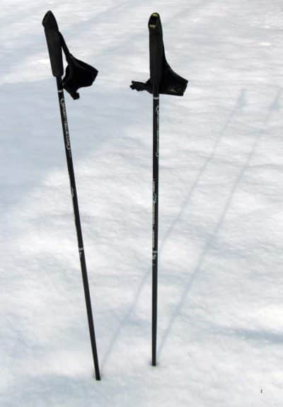 nordic walking poles for seniors